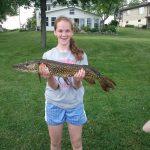 Abbys fish
